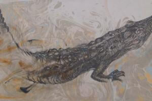 Babilla tinta y ebru sobre papel 30 x 60 cm