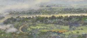 Brazo del Amazonas : Oleo sobre tela : 35 x 180 cms