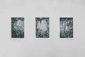 Entre el bosque : Aguatinta sobre Zinc : 35 x 50 cms